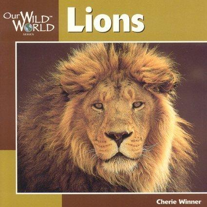 Lions (Our Wild World)