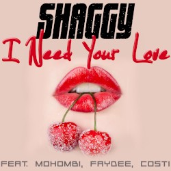 Shaggy - Habibi Love (I Need Your Love)