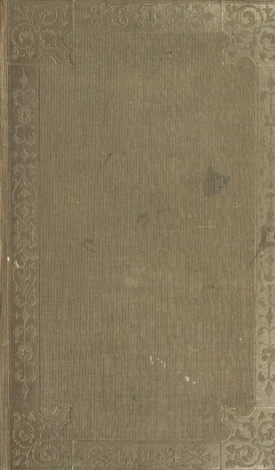 The nemesis of faith by James Anthony Froude